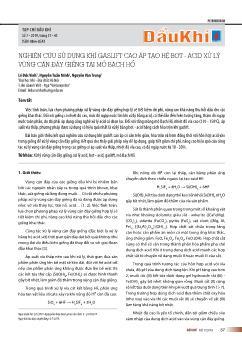 Nghiên cứu sử dụng khí gaslift cao áp tạo hệ bọt-Acid xử lý vùng cận đáy giếng tại mỏ bạch hổ