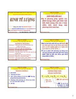 Giáo trình Kinh tế lượng - Chương 3: Hồi quy tuyến tính đơn - Nguyễn Thống